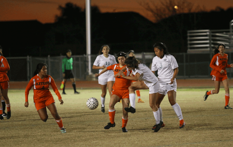 Girls soccer tops Highland in first round of state tournament