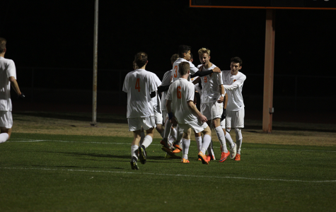Boys soccer defeats Chandler Wolves in the first round of playoffs